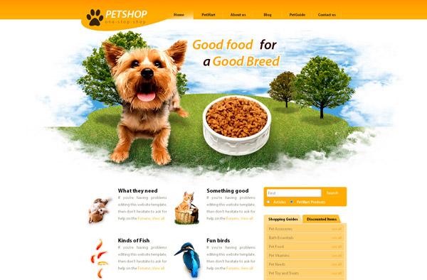 Thiết kế web bán thú cưng chuyên nghiệp