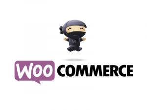 Woocommerce Training