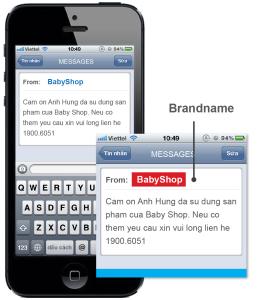 SMS Brand Name 011
