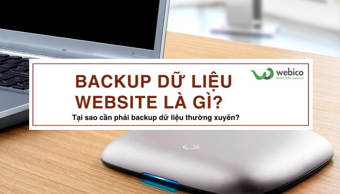 Backup Du Lieu Website