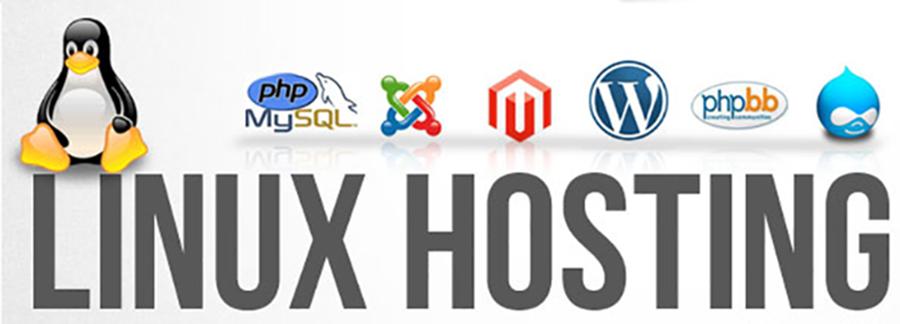 Webico cho thuê linux hosting giá rẻ chất lượng