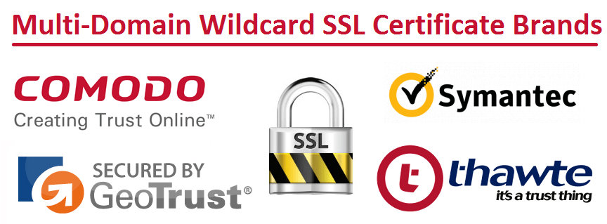 Multi Domain Wildcard SSL Certificate Brands